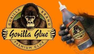Woman Who Put Gorilla Glue In Her Hair Raises $13,000 On GoFundMe